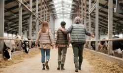 Joburi de viitor: (41) Broker comunitar de finanțe agricole