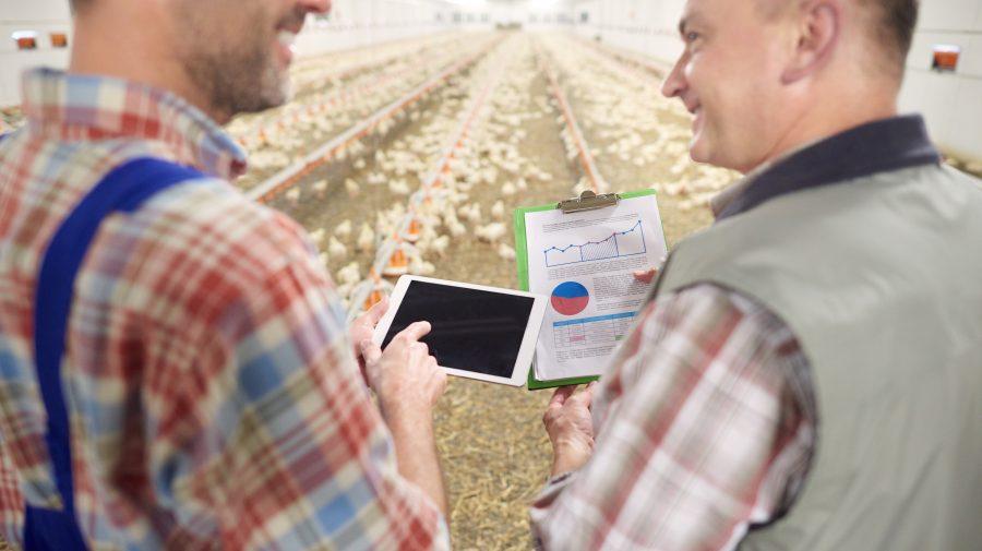 Joburi de viitor: (85) Data Farmer
