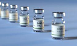 Vaccinurile anti-COVID-19 vor fi introduse în țară fără plata tuturor taxelor fiscale și vamale