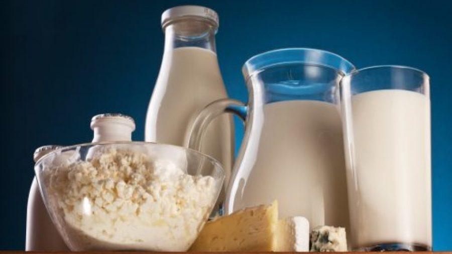 Va fi mărită producția de lactate. După 10 ani de stagnare, autoritățile propun investiții în acest domeniu