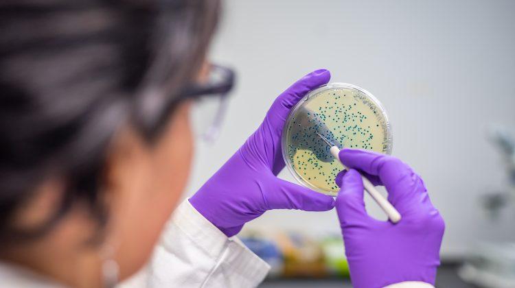 Joburi de viitor: (73) Terraforming Microbiologist