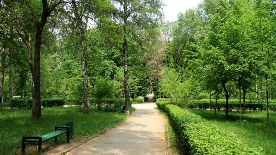 (DOC) Aflarea în parcuri și păduri este permisă însă cu anumite restricții. Iată ce reguli trebuie să respectăm