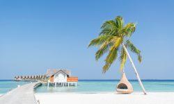 """Insulele Maldive ar putea dispărea: """"Nu vom supraviețui creșterii nivelului apelor"""""""