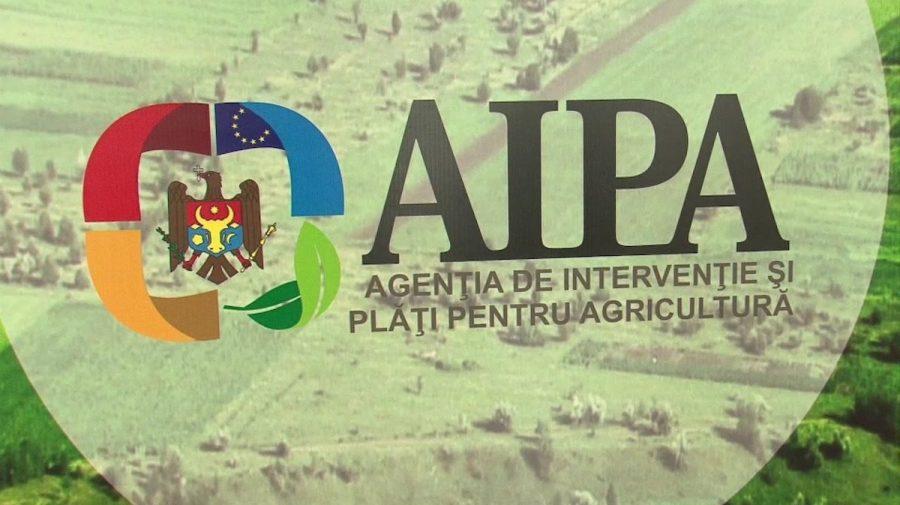 Primele declarații ale AIPA cu referire la perchezițiile CNA