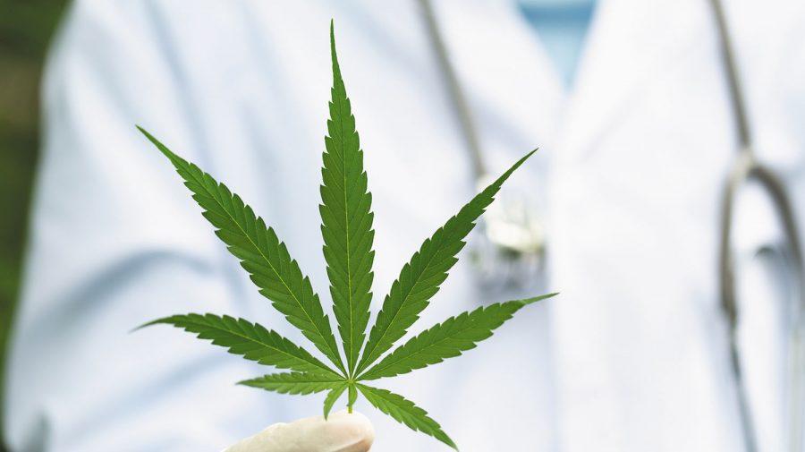 Snoop Dogg susține o firmă ce produce canabis medical. OCT a fost lansată pe bursa din Londra