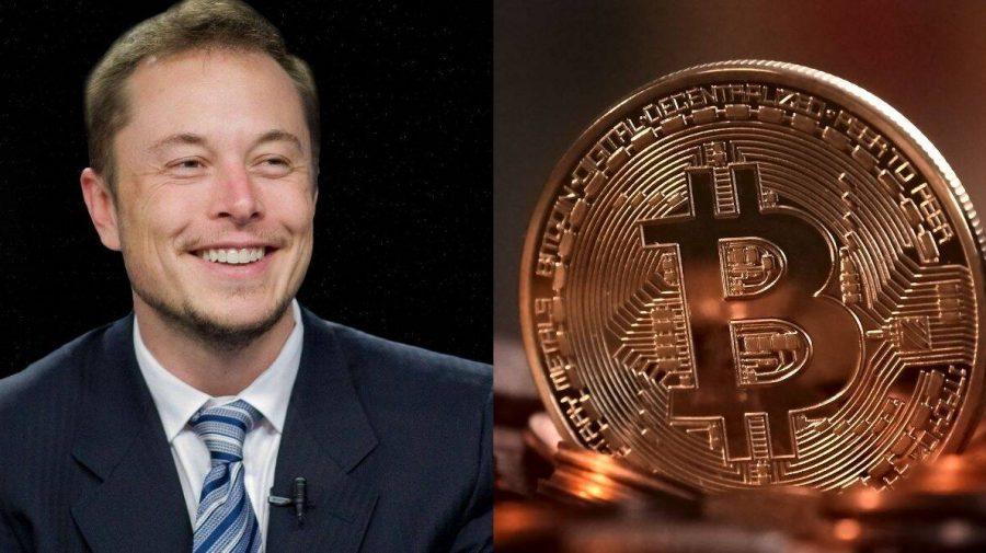 Investitorii vin cu un apel către Elon Musk: Nu mai posta pe Twitter