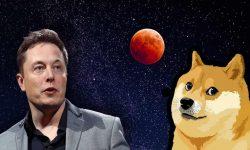 Elon Musk pune bazele comerțului interplanetar. Un satelit SpaceX, finanţat prin Dogecoin, va ajunge pe lună