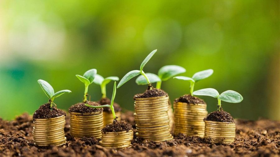 IMM-urile vor beneficia de suport în ecologizarea afacerilor. Ce prevede programul (DOC)