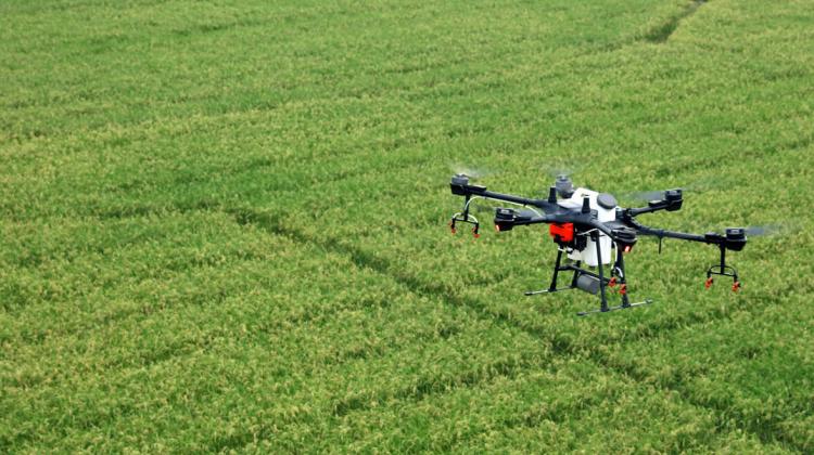 Agricultura viitorului vine în RM. Interviu cu firma ce mișcă piața și angajează un operator de drone
