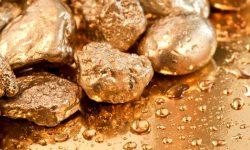 Lângă o mină de aur abandonată din Africa de Sud au fost găsite cadavrele a 20 de mineri ilegali
