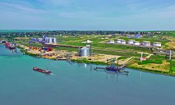 Ioniță, despre achiziția Portului Giurgiulești de către BERD: Riscuri de zeci de milioane de Euro pentru Moldova