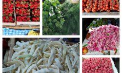 După o mică scădere, prețul la căpșuni crește din nou! Au apărut în vânzare și păstăi! Prețurile la Piața Centrală