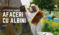 Istoria unor apicultori de la Bălți. Cum au beneficiat de subvenții în avans de 650.000 lei, pentru extindere