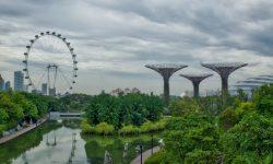 """(FOTO) Câte un parc la 10 minute de fiecare casă. Singapore și strategia de """"reînviere"""" a biodiversității"""