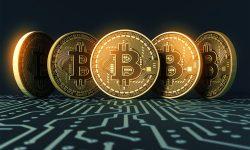 JBS recunoaște că a plătit hackerilor o răscumpărare de de 11 milioane de dolari. A achitat cu Bitcoin