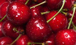Moldova – locul 7 în lume după volumul exportat de cireșe. În ce țări s-au făcut cele mai mari livrări