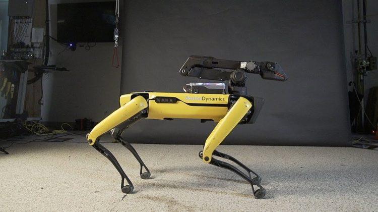(VIDEO) Inteligența artificială nu are limite: Roboțeii care dansează în unison
