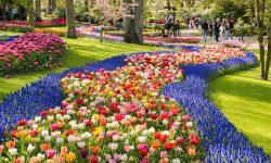 (FOTO) Deosebite și colorate. Cele mai spectaculaose grădini din lume