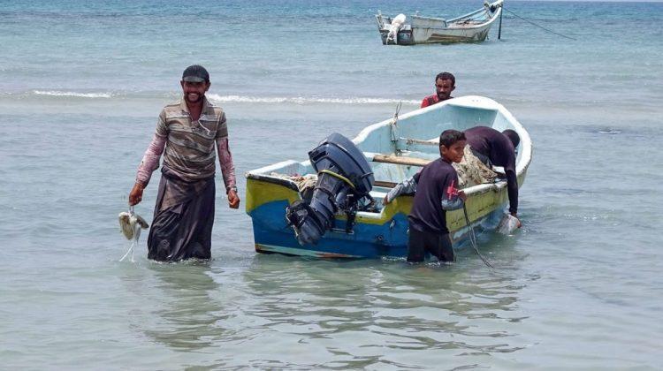 Comoară de 1,5 milioane de dolari în stomacul unui cașalot mort. Ce au descoperit pescarii din Yemen