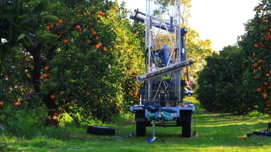 (FOTO/VIDEO) Robotul care culege fructe! Eve le recunoaște pe cele coapate