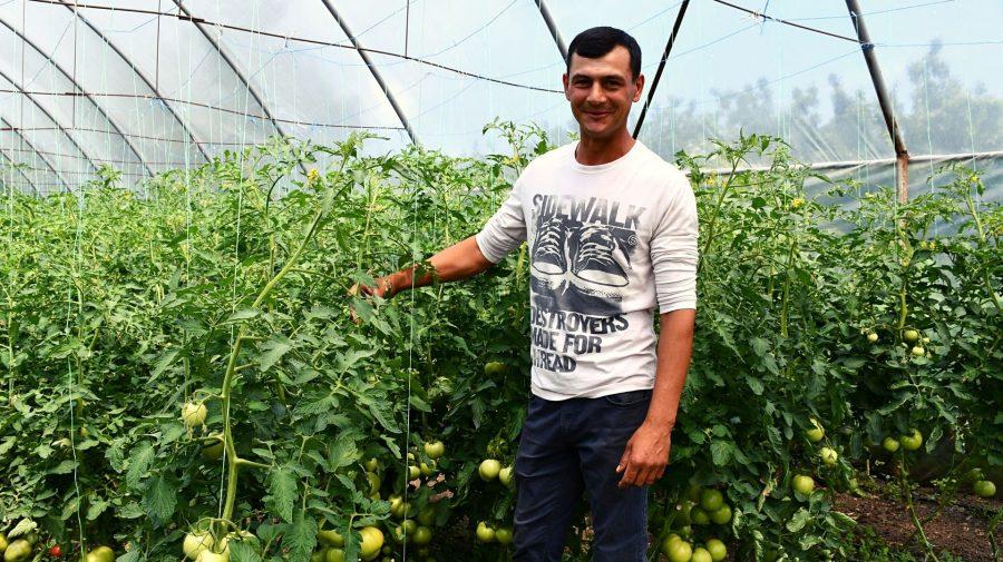 Vasile Jitari, antreprenor în agricultură: Toți fug peste hotare, dar aici, acasă, la fel se pot face lucruri mărețe