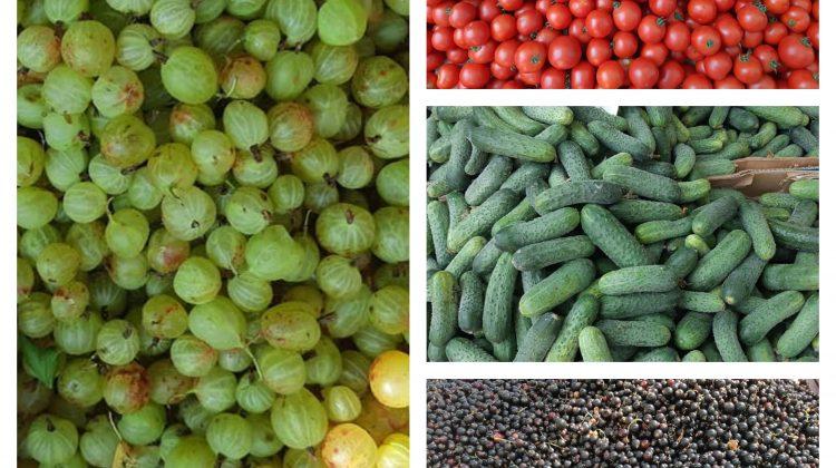 (FOTO) Vă doriți caise, piersici, nectarine sau poate mure? Prețurile la Piața Centrală de astăzi