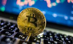 Monedele digitale: ținta escrocilor. Un bărbat a primit 15 ani de închisoare pentru fraudă