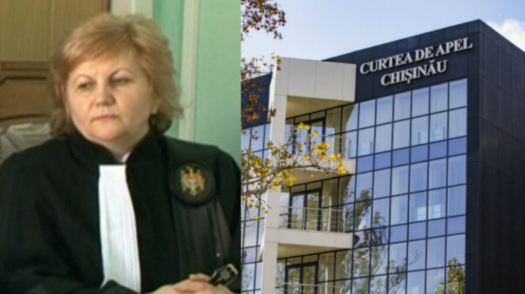 Averea familiei şefei de la Curtea de Apel Chişinău: casă de lux, spaţii comerciale şi afaceri în agricultură