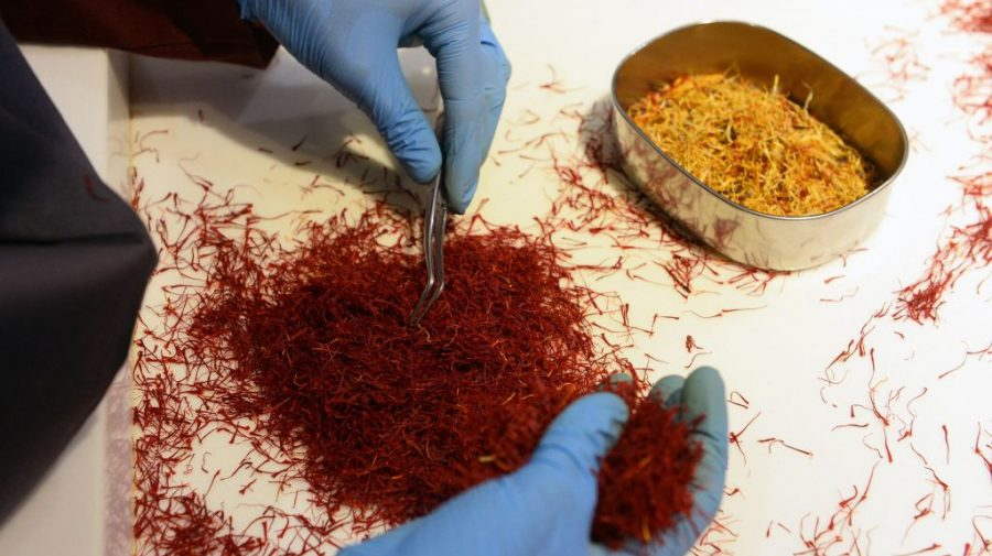 Condimentul care te îmbogăţeşte: un kilogram costă 10.000 de euro. Românul care îl cultivă