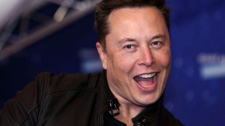 """Porumbeii """"amenință"""" rețeaua de internet prin satelit a lui Elon Musk"""