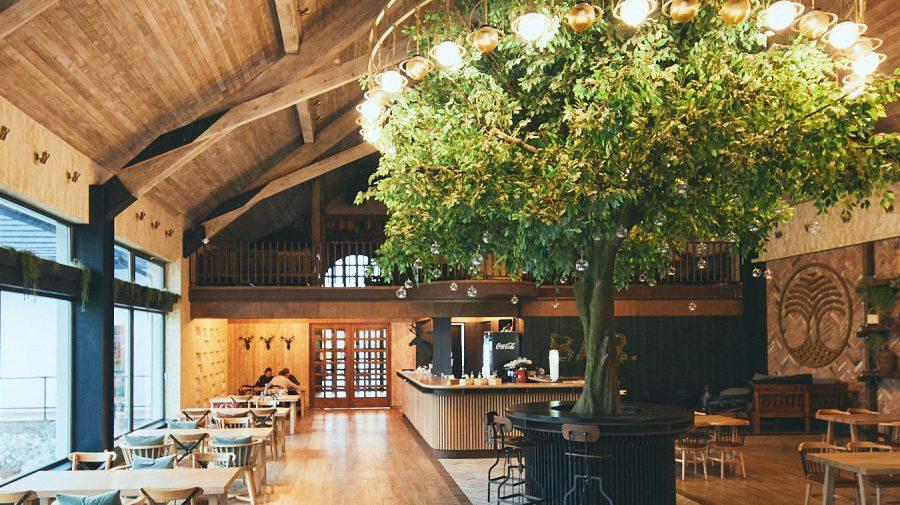 FOTO Aceste locuri uimitoare valorează o mie de selfie-uri: Restaurant din România, în TOP cele mai fotogenice din lume