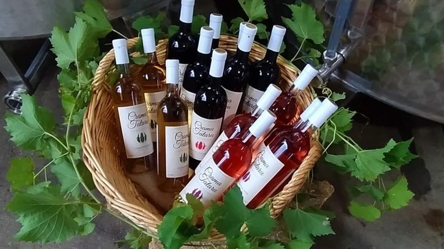 O nouă cramă în Moldova – mic producător de vinuri care a rezistat crizei și a deschis o cramă pentru turiști
