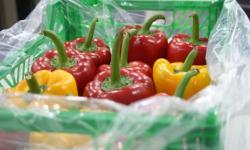 O nouă invenție: Punga de ambalare a fructelor și legumelor care poate controla nivelul de umiditate din interior