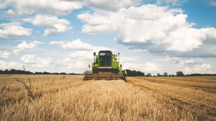Sectorul agricol din țara noastră va beneficia în continuare de suportul FAO