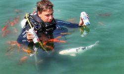 Ce zici de o bere savurată sub apă? Unde se află prima berărie subacvatică din Europa