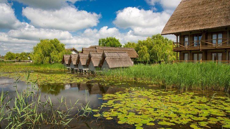 (FOTO) Cazări inedite în România: top CINCI pensiuni din Delta Dunării