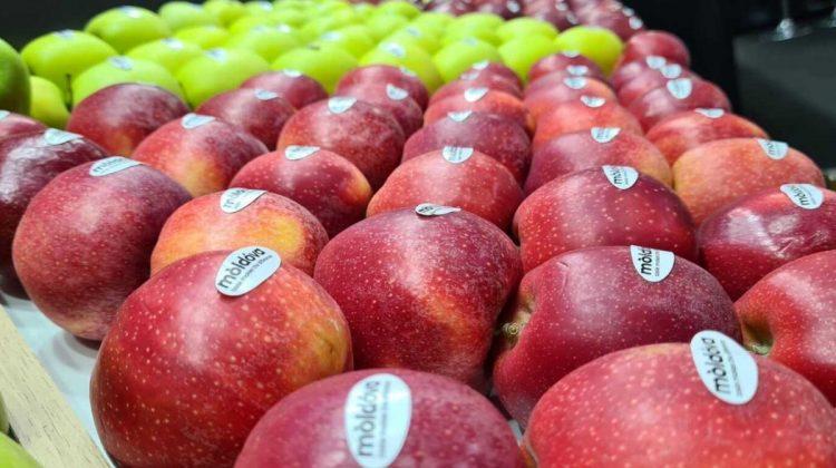 Aproximativ 99% din merele moldovenești ajung în Rusia. Producătorii sunt îndemnați să exporte în UE