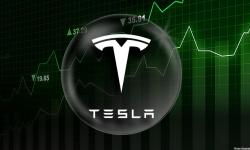 ARK Invest, al celebrei investitoare Cathie Wood, vinde acţiuni Tesla în valoare de 110 milioane de dolari. MOTIVUL