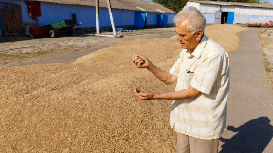 (FOTO) Promovarea agriculturii ecologice nu are vârstă! La 82 de ani, Nicolae Micu îi îndeamnă pe alții să devină ECO