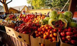 Cea mai mare piață din sudul Moldovei a fost deschisă la Slobozia Mare. Costul total al lucrărilor – 2,6 milioane lei