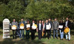 Un grup de 6 apicultori din țară au fost obținut certificarea ECO pentru miere. Ce condiții au îndeplinit