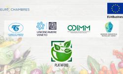 Oportunitate pentru companiile autohtone din domeniul bio-alimentar. Ce presupune proiectul PLAT4FOOD
