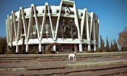 Pâine și circ! A fost lansată licitația de reabilitare a arenei circului din Chișinău