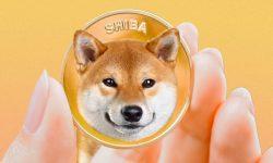 Shiba Inu devine a douăsprezecea cea mai valoroasă criptomonedă din lume, după o creştere de 367% în numai o săptămână
